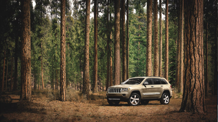 2011-Jeep-Grand-Cherokee-Overland-white-gold
